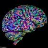 Bilim insanları Alzheimer hastalarında uyku, diyet, ilaç ve egzersiz değişiklikleriyle bellek kaybını 'ilk kez' GERİ ÇEVİRDİ.